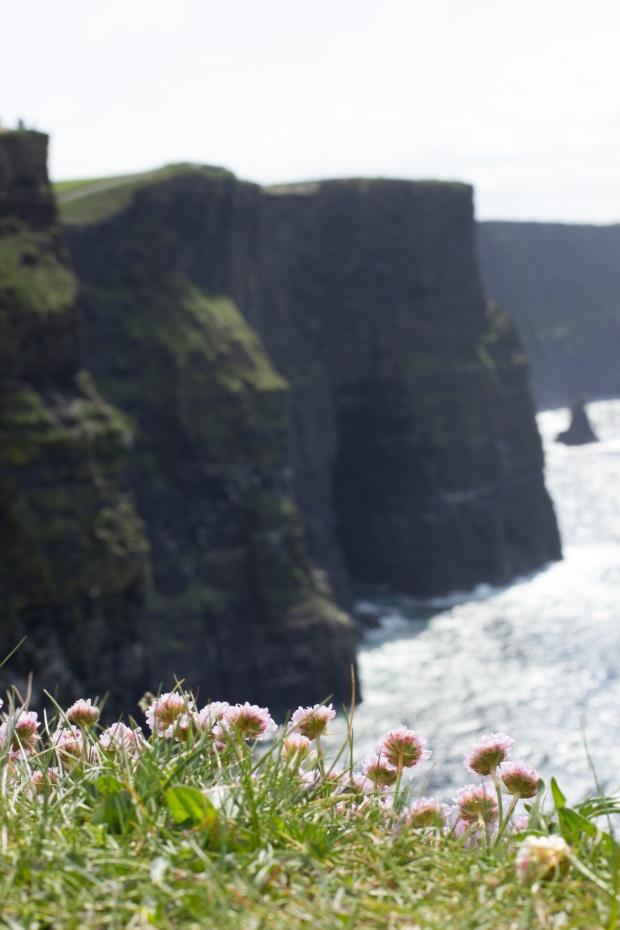 Ireland_Sunday012.3