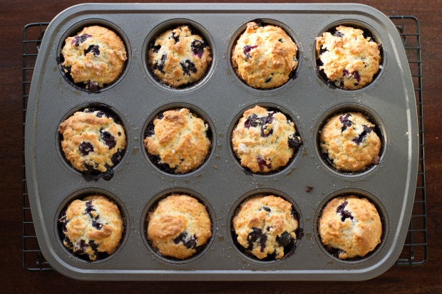 Muffins029
