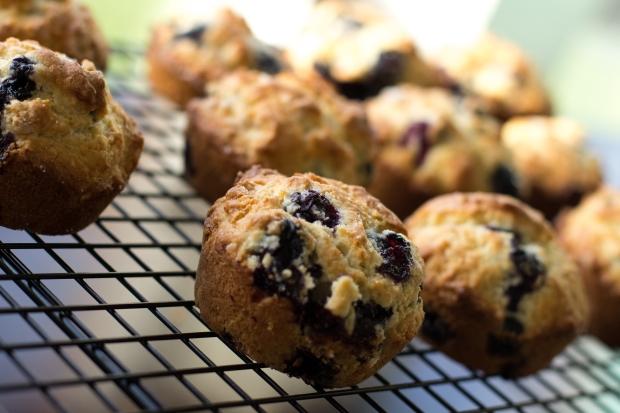 Muffins030