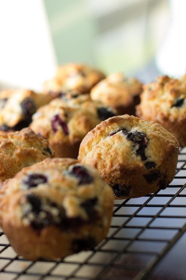 Muffins031