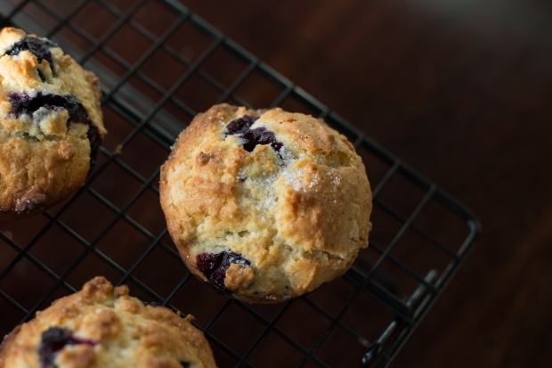 Muffins032