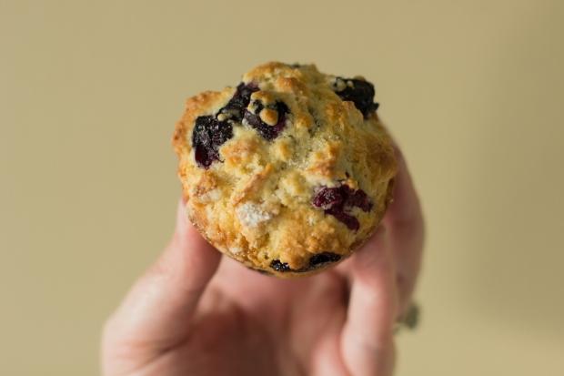 Muffins035